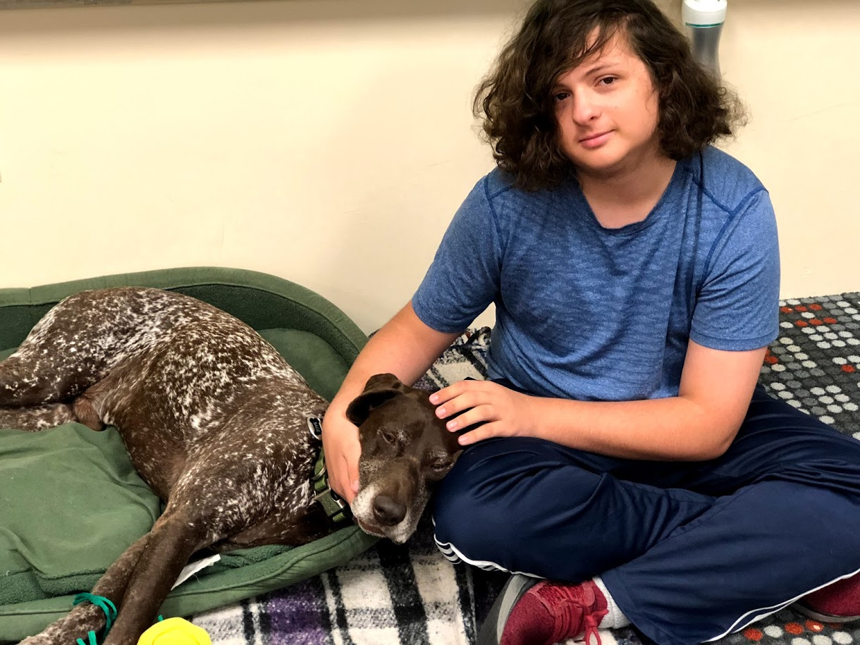 5 Benefits of Animal Assisted Therapy at The Calais School ...